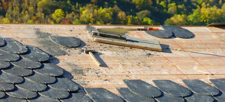 Effectuer un démoussage de toiture pour donner un nouvel éclat à sa résidence