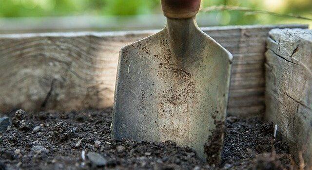 travailler dans son jardin en toute sécurité